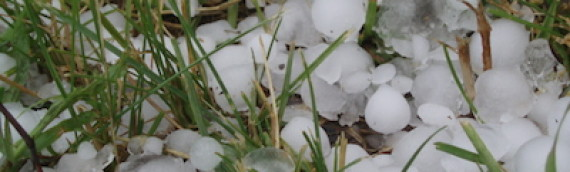 What to Do After a Hailstorm