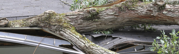 Take Action Against Storm Damage — Use These 3 Roofing Tips