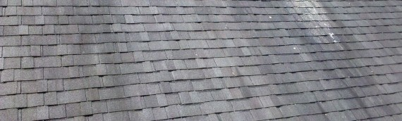 Roofer – Choosing the Best